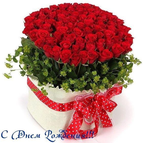 Букеты цветов с днем рождения фото красивые   милая сборка (19 картинок) (16)