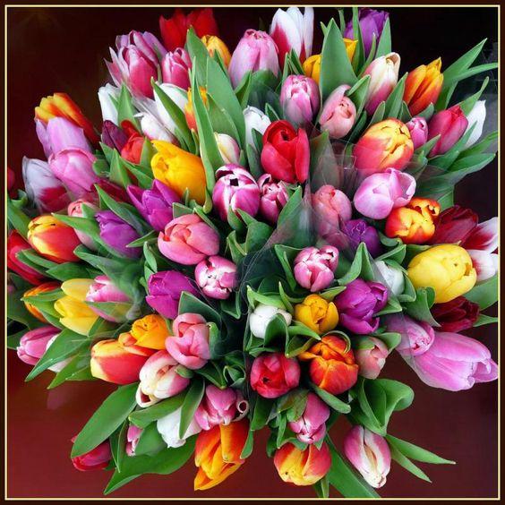 Букеты цветов с днем рождения фото красивые   милая сборка (19 картинок) (6)