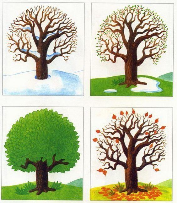 Времена года дерево   красивые поделки и рисунки для детей (4)