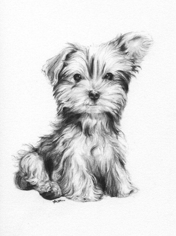 Изображения и рисунки сложные, непростые   подборка 25 картинок (16)