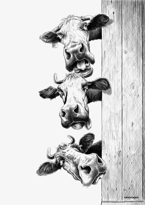 Изображения и рисунки сложные, непростые   подборка 25 картинок (20)