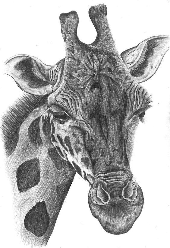 Изображения и рисунки сложные, непростые   подборка 25 картинок (8)