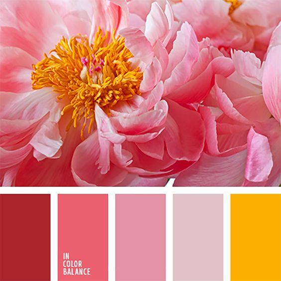 Какие цвета в радуге по порядку картинки для детей (1)