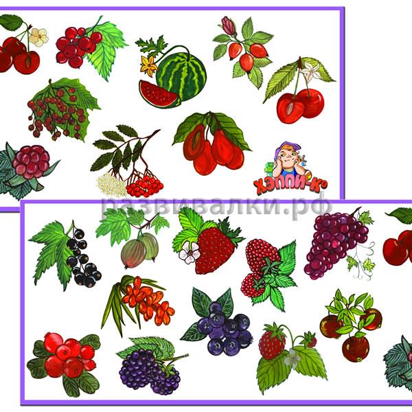 Картинки лесных ягод для детей детского сада   подборка (14)