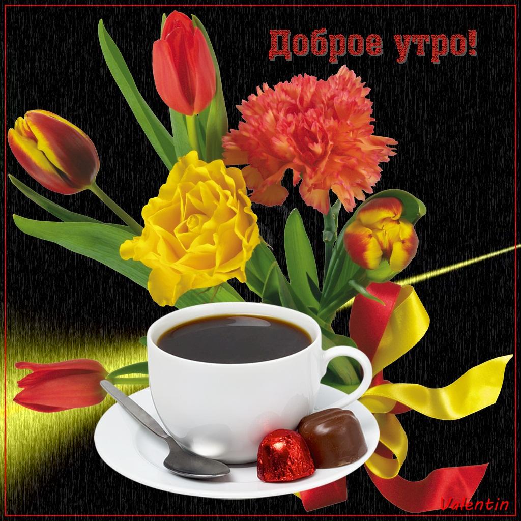 На телефон открытки доброе утро, картинки для