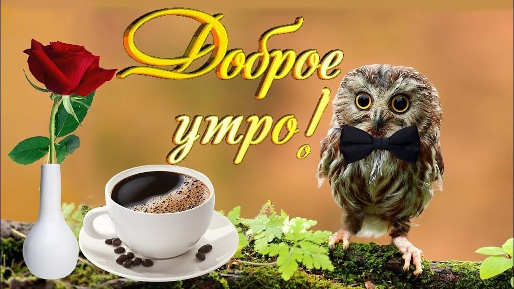 Открытки со словом доброе утро музыкальные, любимой иришке