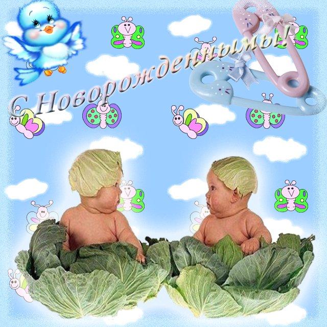 Картинки с рождением близнецов мальчика и девочки