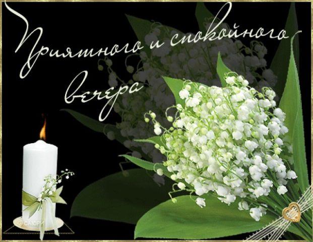 Картинки хорошего вечера и доброй ночи для любимых (9)