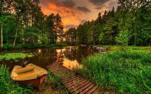 Красивые фото с природой в хорошем качестве   подборка (113)