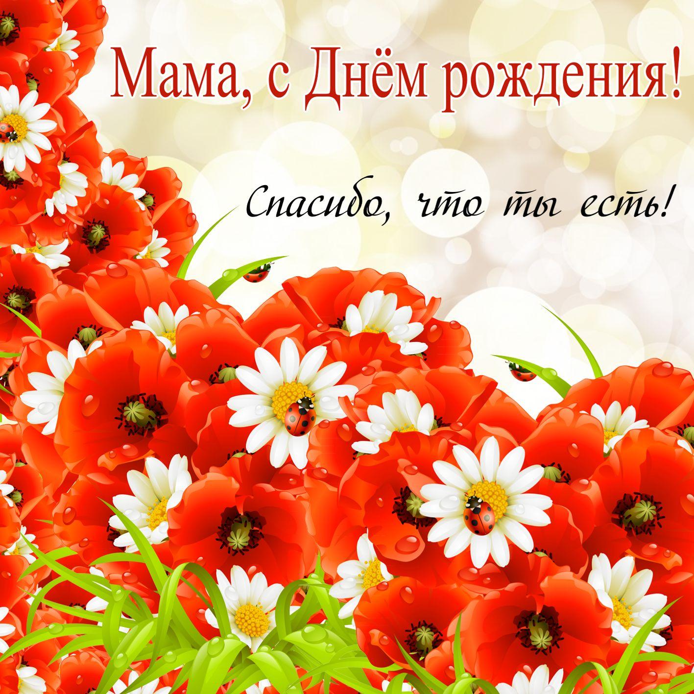 Фото открытки для мамы с днем рождения