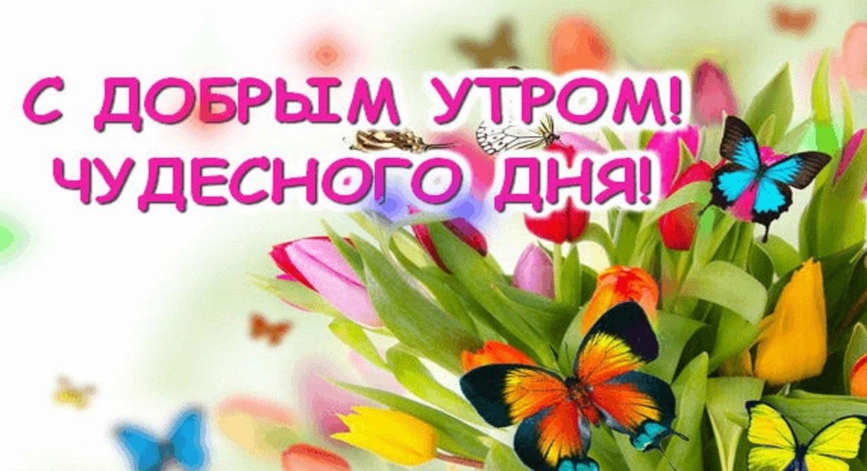 Открытки доброго утра и хорошего дня дорогая   лучшие картинки (18)