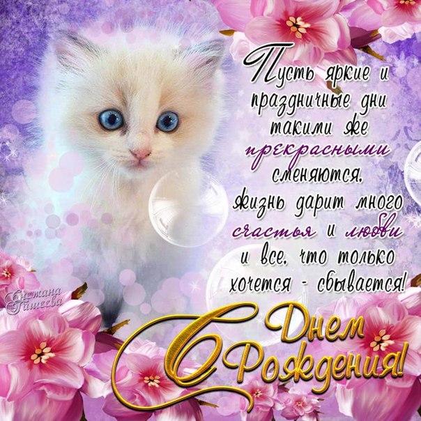 Открытки с днем рождения для женщины с котиками, обожаю тебя любимый