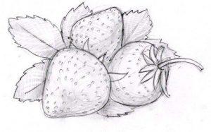Рисуем карандашом   подборка (29 картинок) (25)