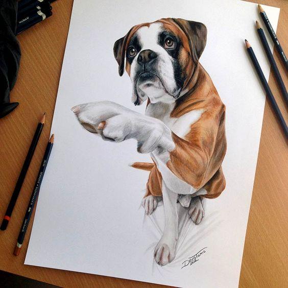 Рисунки цветными карандашами   интересно (25 картинок) (10)
