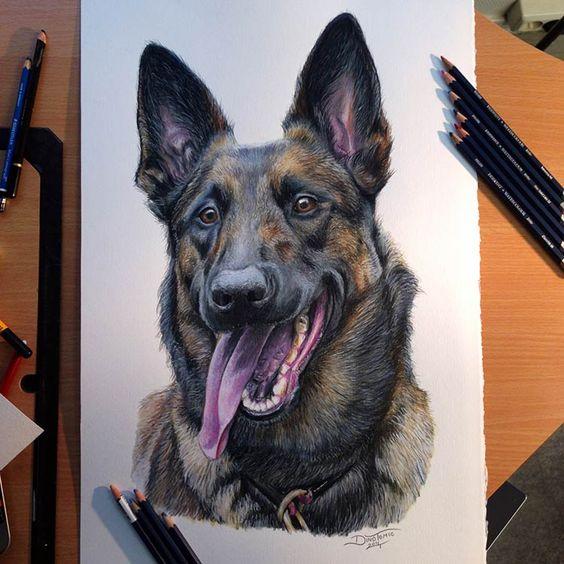 Рисунки цветными карандашами   интересно (25 картинок) (14)