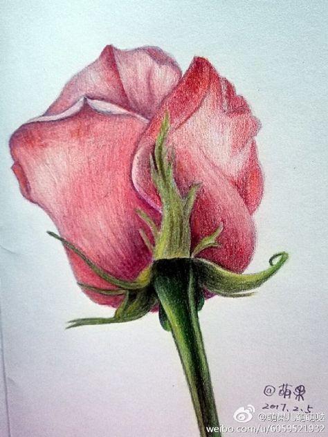 Рисунки цветными карандашами   интересно (25 картинок) (23)