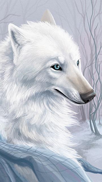 Скачать на телефон картинки волки   лучшие заставки (34)