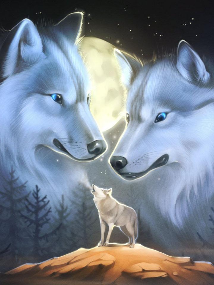 Скачать на телефон картинки волки   лучшие заставки (8)