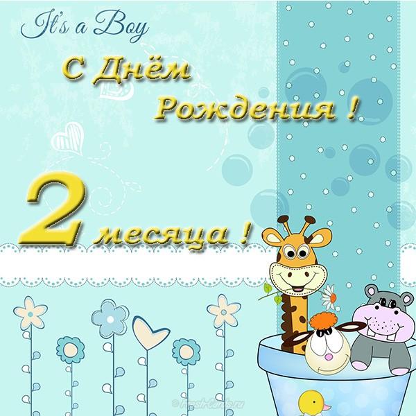 Поздравление день рождения по месяцам открытка