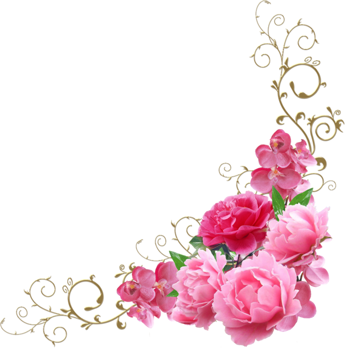 Цветок картинка для детей на прозрачном фоне   сборка (18)