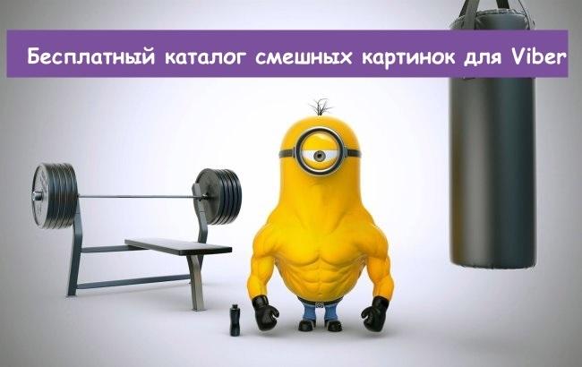 Аватарки смешные скачать бесплатно   подборка008