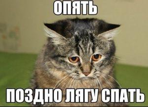 Аватарки смешные скачать бесплатно   подборка028