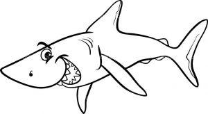 Акула картинка для детей раскраска   подборка 029