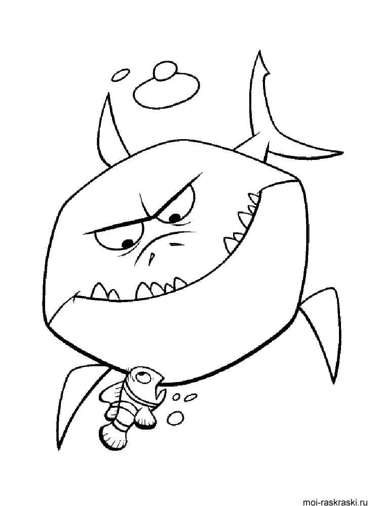 Акула картинка для детей раскраска