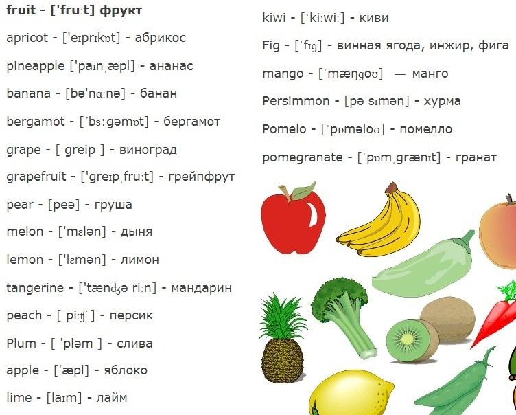 Английские слова картинки для детей   подборка 017