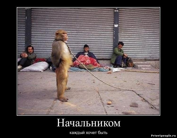 Анекдоты про начальника и подчиненных самые смешные   картинки006