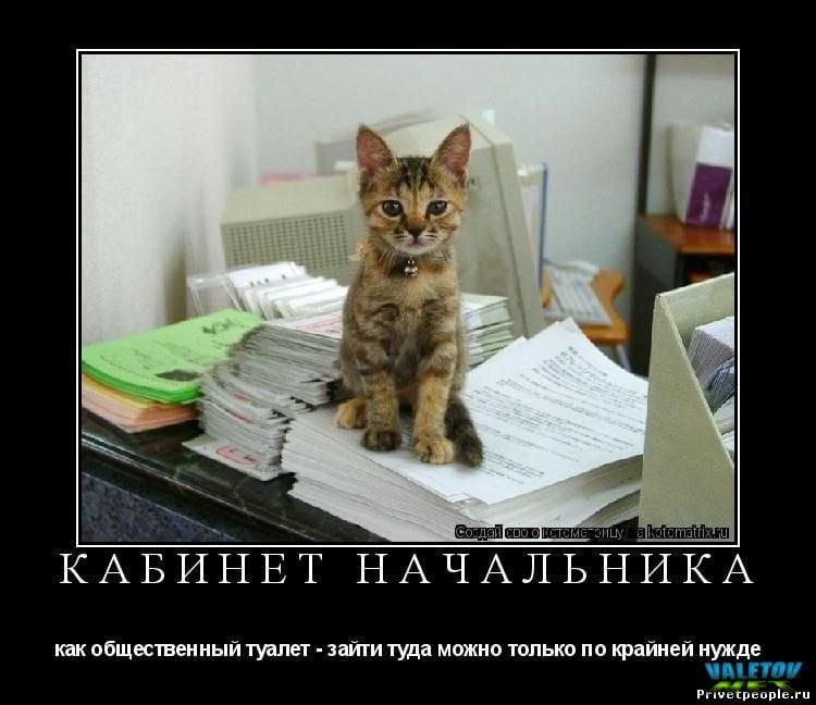 Анекдоты про начальника и подчиненных самые смешные   картинки011