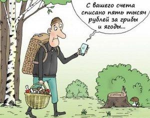 Анекдоты про охоту свежие и смешные до слез029