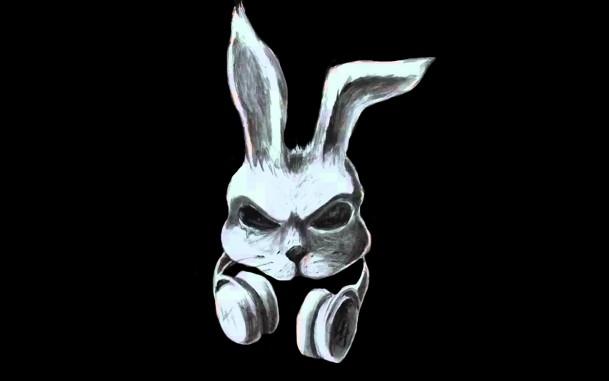 Арт кролики красивые картинки005