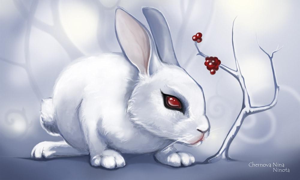 Арт кролики красивые картинки013