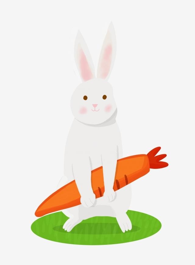 Арт кролики красивые картинки016
