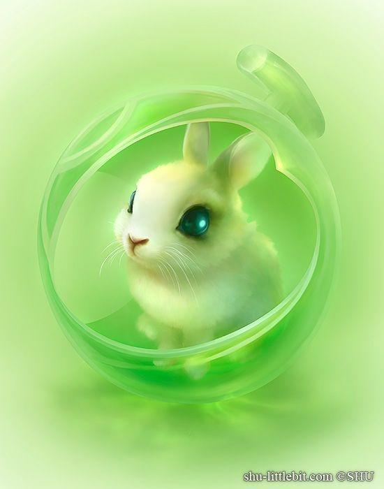 Арт кролики красивые картинки022