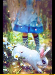 Арт кролики красивые картинки027