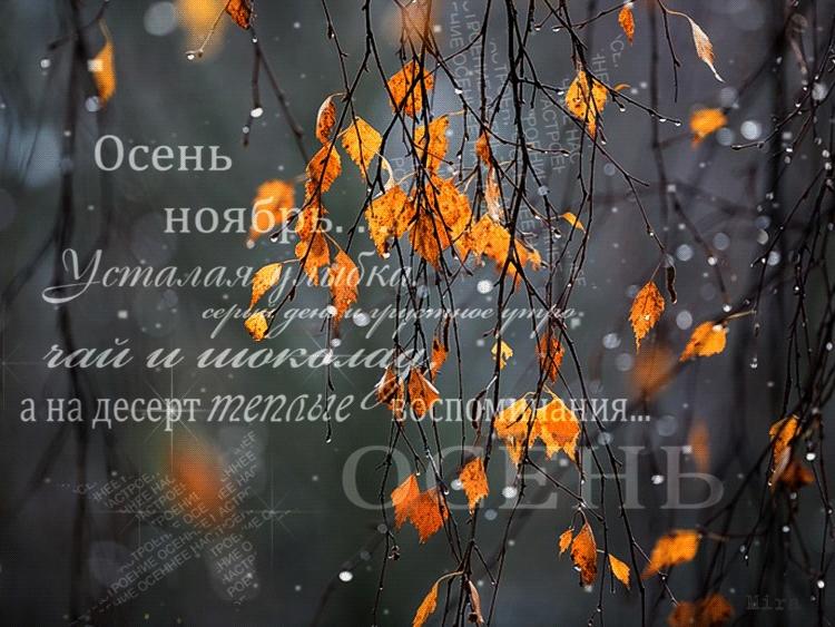 А завтра осень картинки и открытки красивые 017