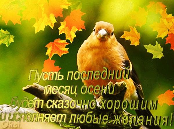 А завтра осень картинки и открытки красивые 023