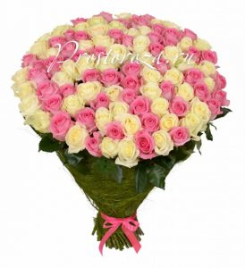 Белые и розовые розы фото и картинки 026