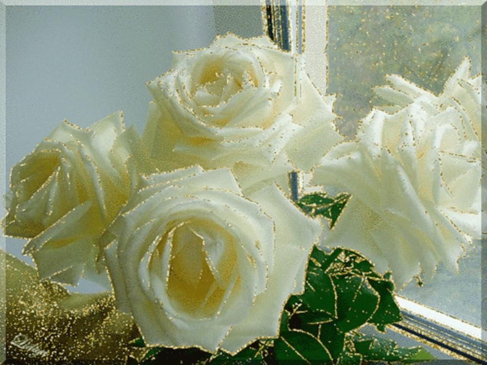 Открытки с днем рождения с белыми розами анимация, днем рождения