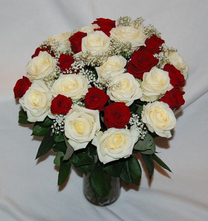 фото букет роз белых и красных как учат