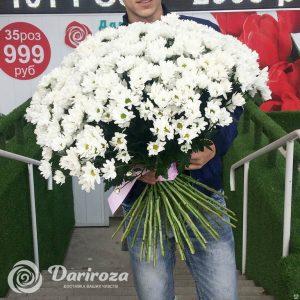 Букет из 5 кустовых хризантем очень красивых 026