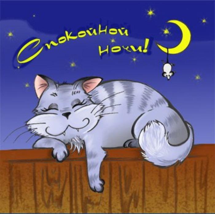 Пожелания спокойной ночи картинки прикольные коты, надписями расставания