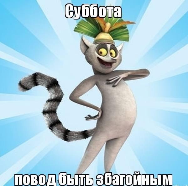 Веселые и смешные фото про субботу019