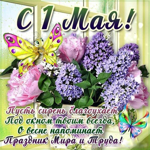 Весна май фото и картинки красивые 006