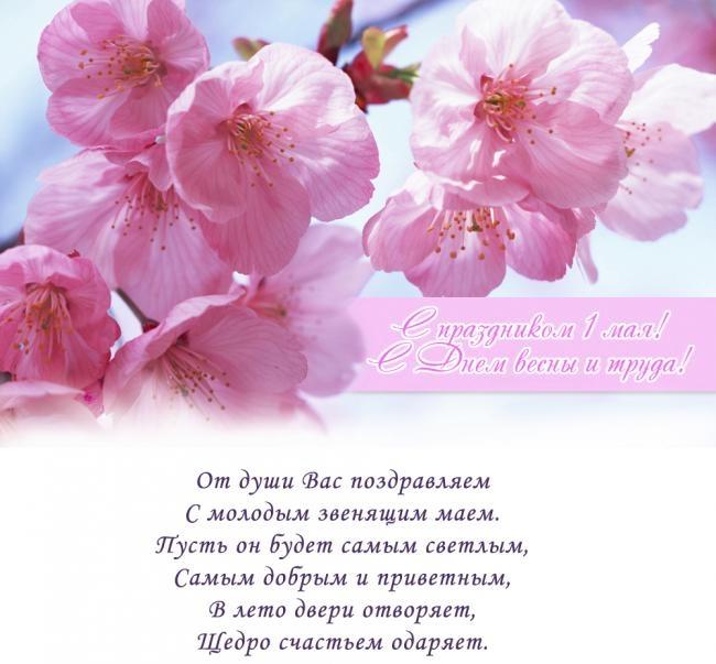Весна май фото и картинки красивые 013
