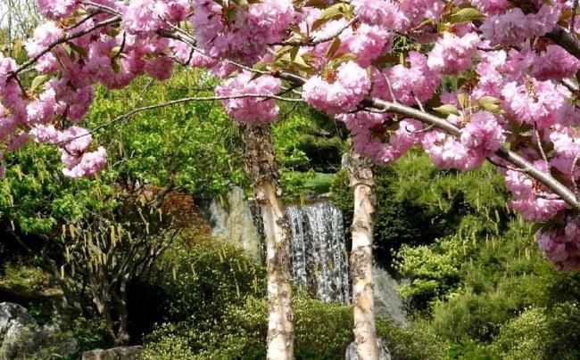 Весна май фото и картинки красивые 022