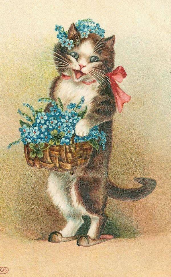 Винтажные открытки кошки, картинки