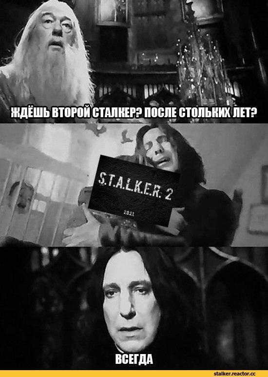 Гарри Поттер смешные фото и картинки006
